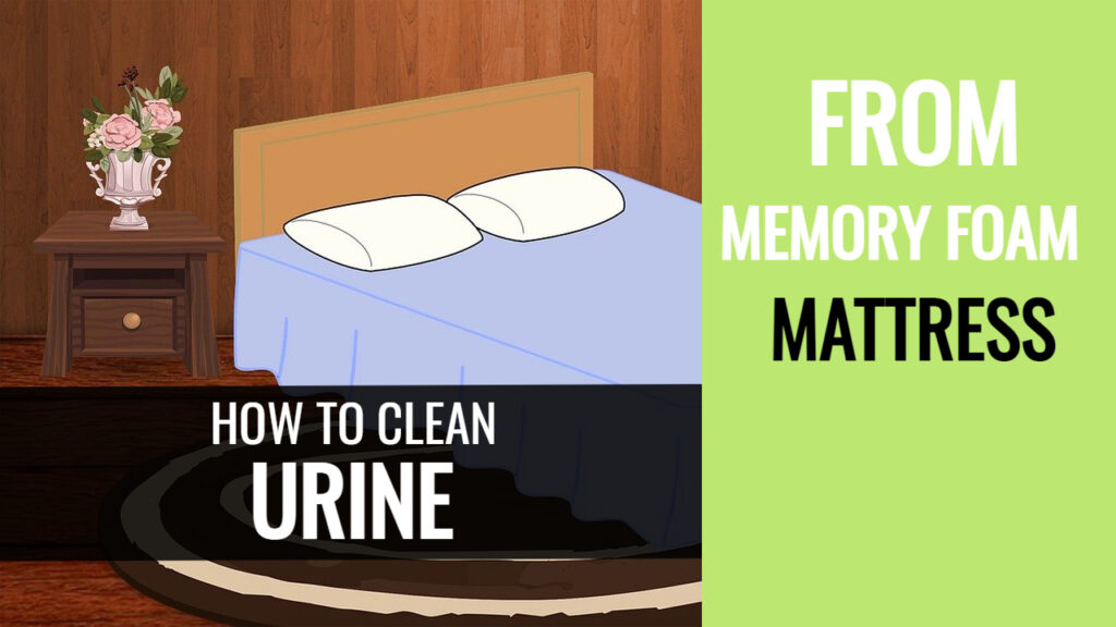 how to clean dry urine from memory foam bed